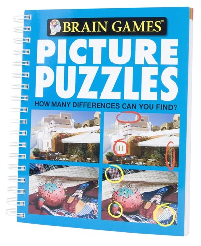 Brain Games Picture Puzzles 9781412799669