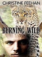 Burning Wild 9781410419361