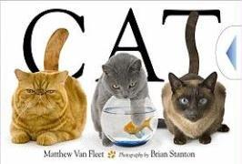 Cat 9781416978008