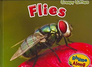 Flies 9781410948076