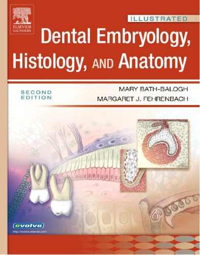 Illustrated Dental Embryology, Histology, and Anatomy 9781416024996
