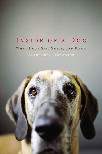 Inside of a Dog: What Dogs See, Smell, and Know 9781416583400