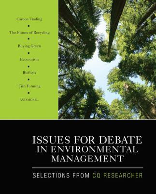 Environmental issues international business