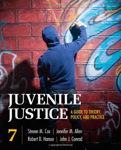 Juvenile Justice: A Guide to Theory, Policy, and Practice 9781412982252