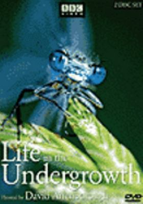 Life in the Undergrowth 9781419829192