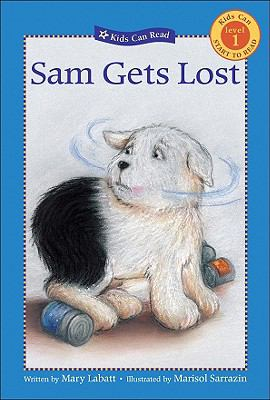 Sam Gets Lost: Level 1 9781417743643