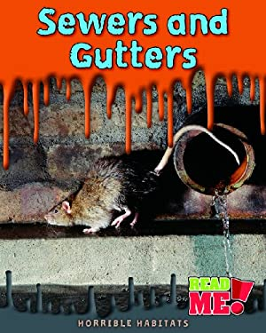 Sewers and Gutters 9781410934901
