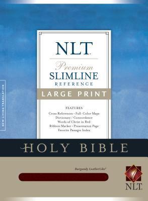Slimline Reference Bible-NLT-Large Print [With Ilumina Software]