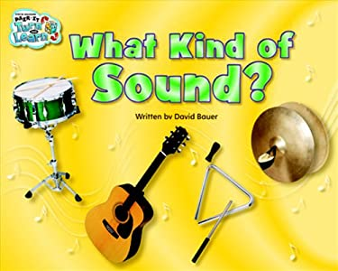 Steck-Vaughn Pair-It Turn and Learn Emergent 2: Student Reader Grades 1 - 2 What Kind of Sound?/Danny's Drum, Sound 9781419006067