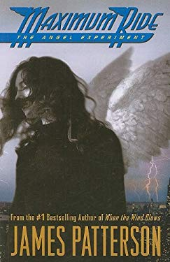 The Angel Experiment 9781410415172