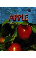 The Life of an Apple 9781410905345