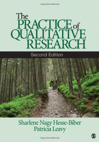 The Practice of Qualitative Research 9781412974578