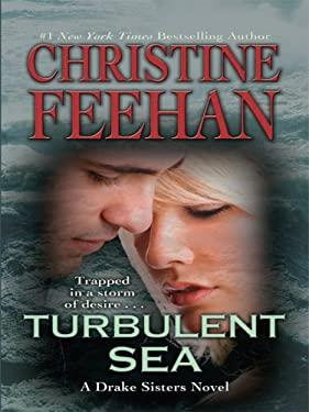 Turbulent Sea 9781410410887