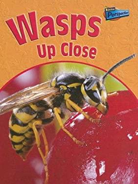 Wasps Up Close 9781410915337