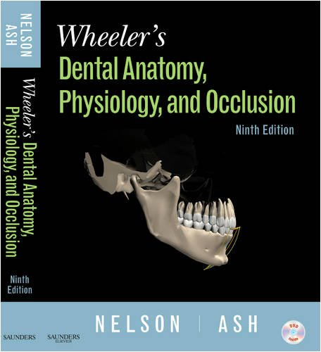 Wheeler's Dental Anatomy, Physiology and Occlusion 9781416062097