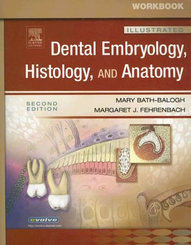 Workbook Illustrated Dental Embryology, Histology, and Anatomy 9781416034711