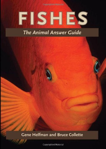 Fishes: The Animal Answer Guide 9781421402222