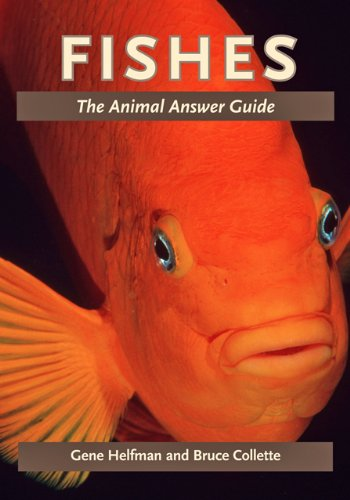 Fishes: The Animal Answer Guide 9781421402239
