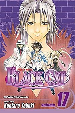Black Cat, Volume 17 9781421516080