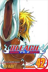 Bleach, Vo...