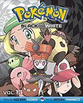Pokemon Black & White 21005064