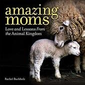 Amazing Moms: Love and Lessons From the Animal Kingdom 22987618