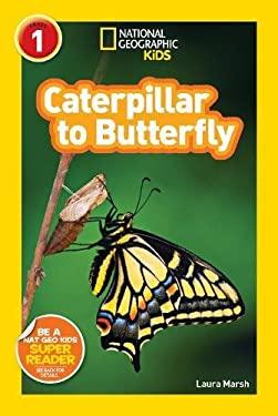 Butterflies, Moths & Caterpillars Animals Children's ...