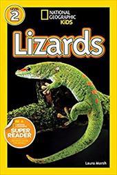 Lizards 16524007