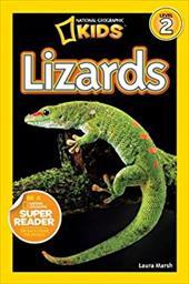 Lizards 16524008