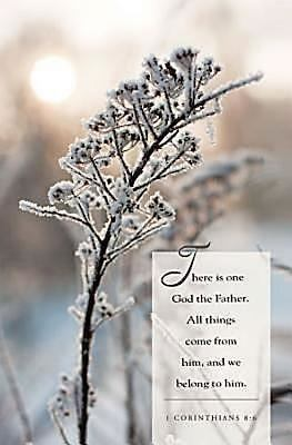 Winter Twig Scripture Bulletin 9781426746437