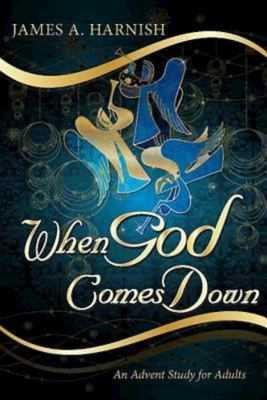 When God Comes Down: An Advent Study for Adults 9781426751080