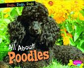 All about Poodles 17623846