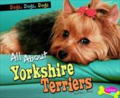 All about Yorkshire Terriers 17623848