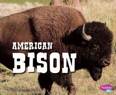 American Bison 9781429677028