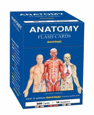 Anatomy Flash Cards