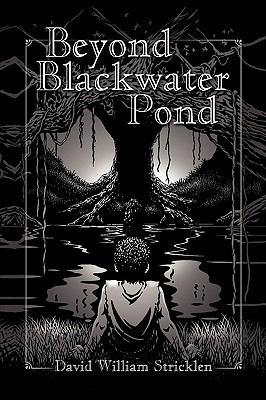 Beyond Blackwater Pond 9781425767921