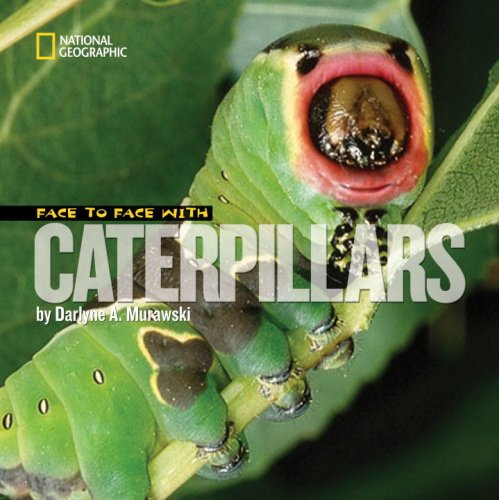 Face to Face with Caterpillars 9781426300523
