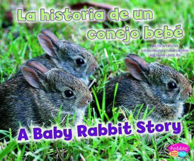 La Historia de un Conejo Bebe/A Baby Rabbit Story 9781429692205