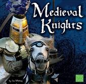 Medieval Knights 6485635