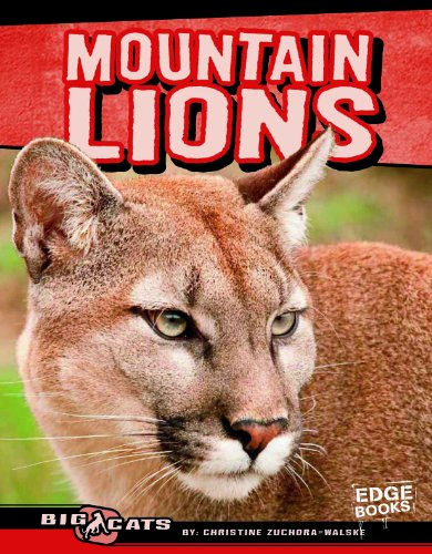 Mountain Lions 9781429676441