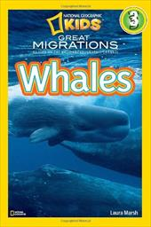 Whales 6431432