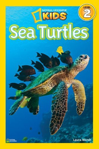 Sea Turtles 9781426308536