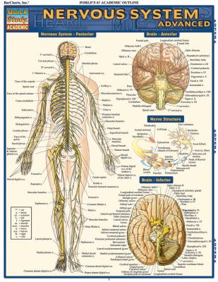 Nervous System Advanced 9781423215066