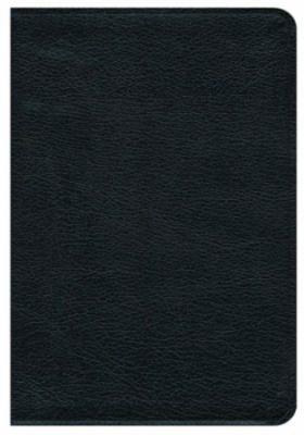 Premium Bible-NRSV 9781426711411