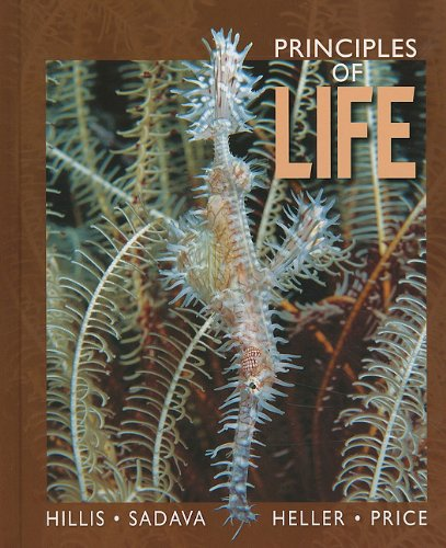 Principles of Life 9781429257213