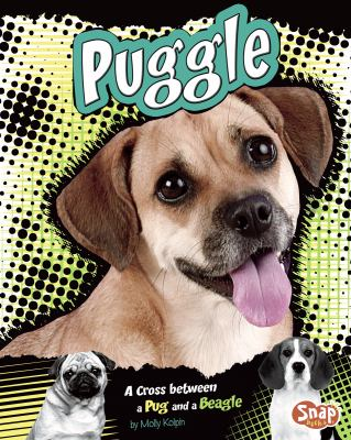 Puggle: A Cross Between a Pug and a Beagle 9781429676656