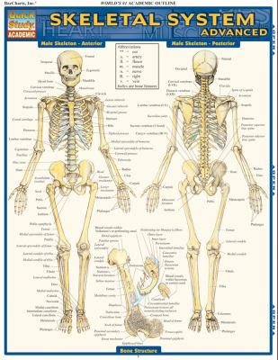 Skeletal System: Advanced 9781423215103
