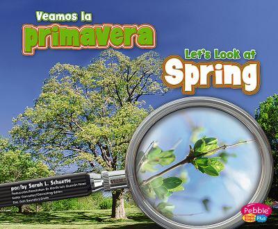 Veamos la Primavera/Let's Look At Spring 9781429622899