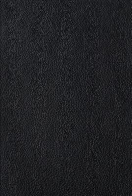 Four Holy Gospels-ESV 9781433521959