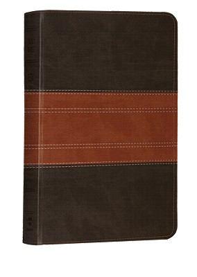 Large Print Compact Bible-ESV-Trail Design 9781433531941